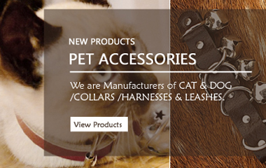 Leather Pet Collars and Belts