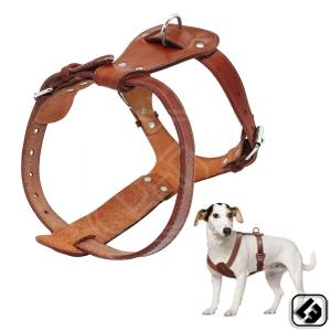 Supplier of PET HARNESSES
